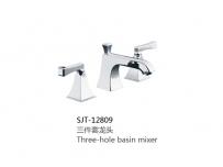 SJT-12809