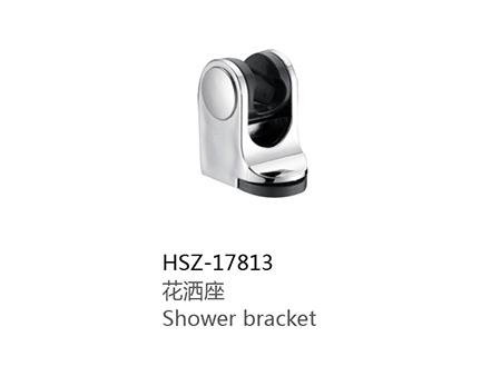 HSZ-17813