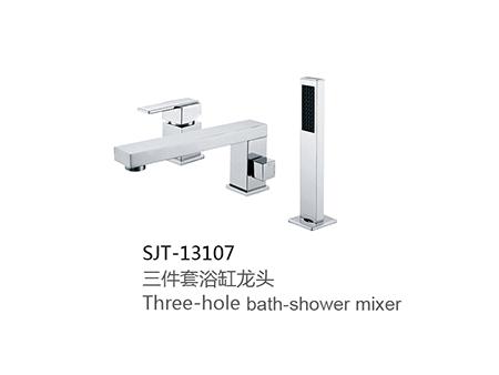 SJT-13107
